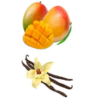 Mangue - vanille bio