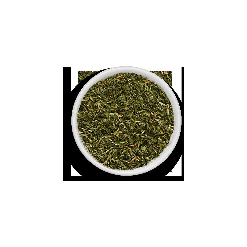 CIBOULETTE PLATE