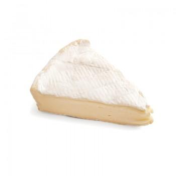 Ferment lactique NT 0,5 U